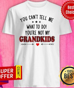 Nice You Can't Tell Me What To Do You're Not My Grandkids Shirt