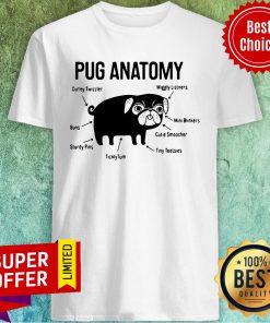 Top The Pug Anatomy Pug Shirt