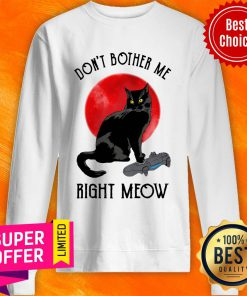 Awesome Cat Don't Bother Me Right Meow Sweatshirt