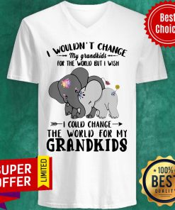 Elephants I Wouldn't Change My Grandkids For The World But I Wish I Could Change The World For My Grandkids V-neck
