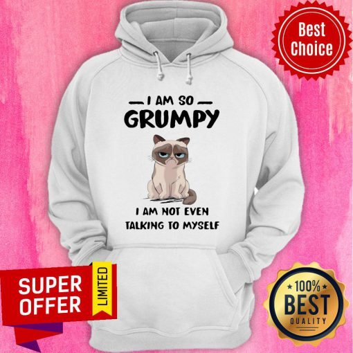 Nice Cat I Am So Grumpy I Am Not Even Talking To Myself Hoodie