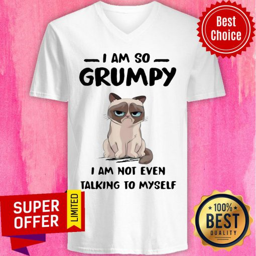 Nice Cat I Am So Grumpy I Am Not Even Talking To Myself V-neck