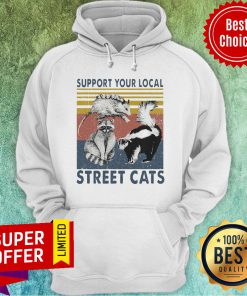 Premium Racoon Support Your Local Street Cats Vintage Hoodie
