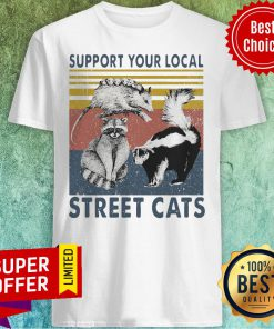 Premium Racoon Support Your Local Street Cats Vintage Shirt