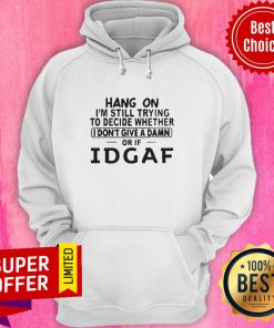 Hang On I'm Still Trying To Decide Whether I Don't Give A Damn Or If Idgaf Hoodie