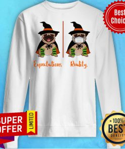 Official Pug Dog Witch Expectations Reality Halloween Sweatshirt
