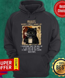 Cat Rules When I First Wake Up Everyone Shut The Hell Up Get Out My Way Don't Ask Me Any Dam Questions Hoodie