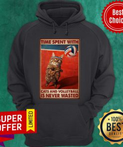 Nice Time Spent With Cats And Volleyball Is Never Wasted Hoodie