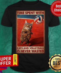 Nice Time Spent With Cats And Volleyball Is Never Wasted Shirt