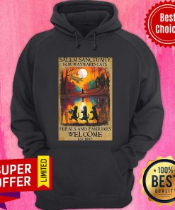 Salem Sanctuary For Wayward Cats Ferals And Familiars Welcome Est 1692 Hoodie