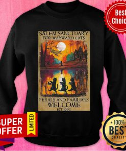 Salem Sanctuary For Wayward Cats Ferals And Familiars Welcome Est 1692 Sweatshirt
