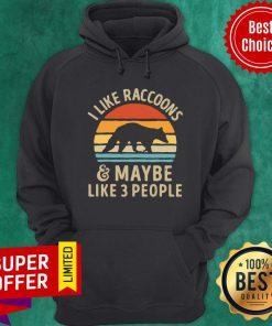 Vintage Retro I Like Raccoons And Maybe Like 3 People Hoodie