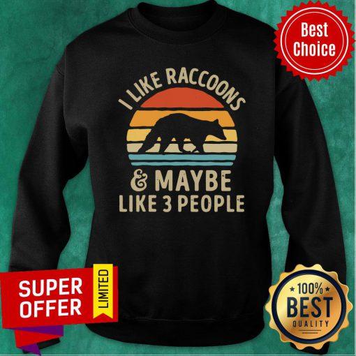 Vintage Retro I Like Raccoons And Maybe Like 3 People Sweatshirt