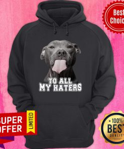 Bleble Pitbull To All My Haters Hoodie
