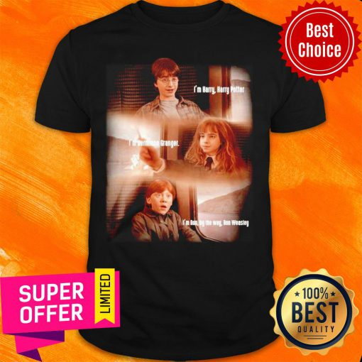 Harry Potter Hermione Granger And Ron Weasley Friends Shirt