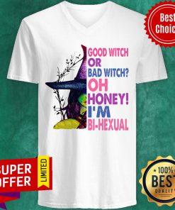 Good Witch Or Bad Witch Oh Honey I'm Bihexual V-neck