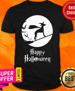 Top Halloween Witch Whippet Dog Lover Shirt