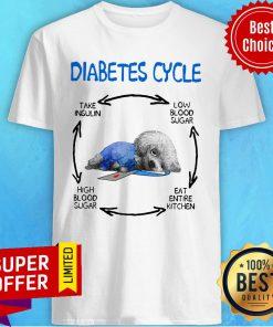 Diabetes Cycle Take Insulin Low Blood Sugar Eat Entire Kitchen High Blood Sugar Shirt